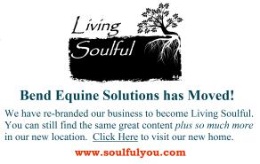 Bend Equine Solutions, LLC